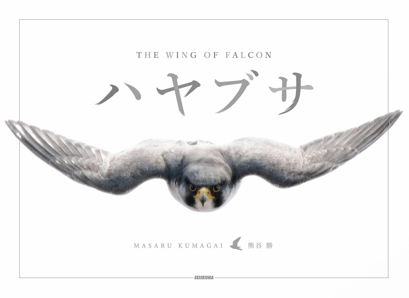 ハヤブサ THE WING OF FALCON